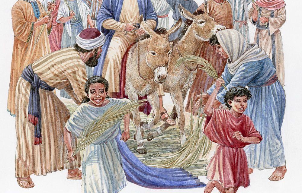 Le dimanche des rameaux